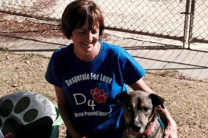 Barko's Boarding Kennel owner Sue Lopicich kneeling with her arm around a brown dog.