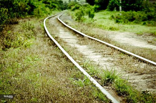 Um caminho