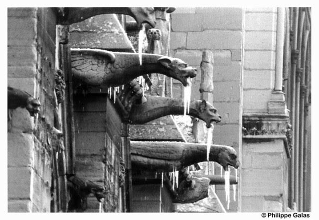 Nore Dame de Paris - Les Gargouilles