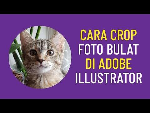 Video Tutorial Adobe: Cara Crop Foto Bulat di Adobe illustrator