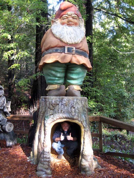 Giant Gnome2