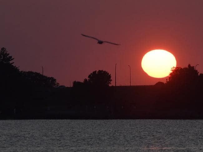 Sydney is expected to be stinking hot today with some inland regions expected to reach 40C. Picture: Dean Lewins/AAP