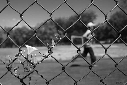 Vida deportiva by Alejandro Bonilla