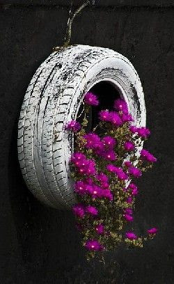 tire and flowers
