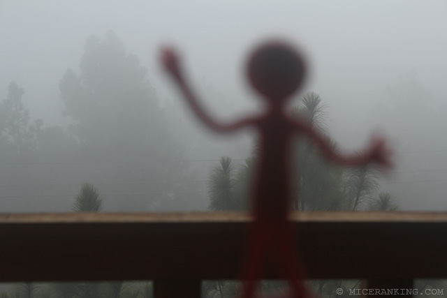 Stickman Meri Phuensom Resort fog
