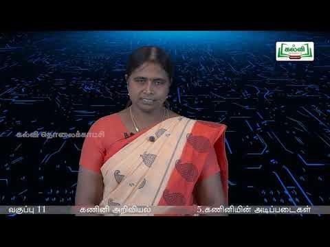 11th Computer applications கணினியின் அடிப்படைகள்  அலகு  பகுதி Kalvi TV