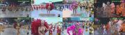 As beldades do Carnaval brasileiro de 2017