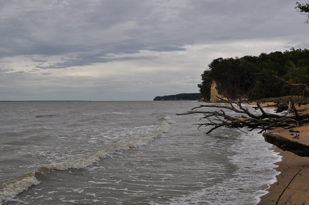 Fossil Beach 14
