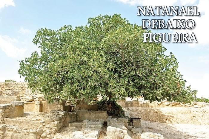 Resultado de imagem para Jesus e natanael debaixo da  figueira