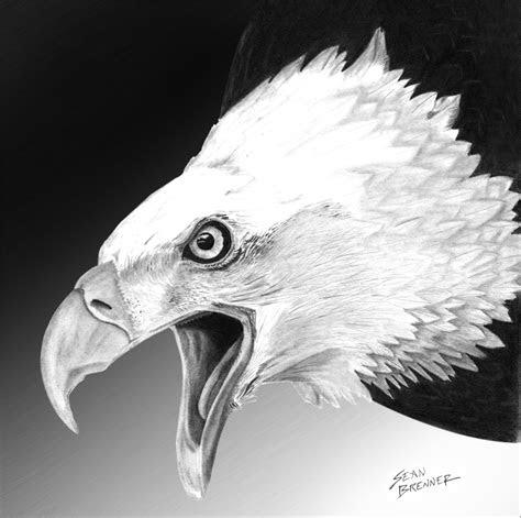 art northlight birds