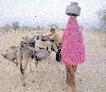 Scarcity of water at most Indian homes in rural India