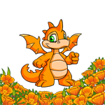 http://images.neopets.com/images/nf/scorchio_orangepoppyfg.png