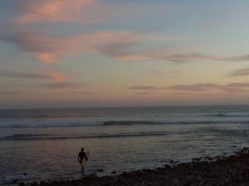 Surfer 350 px