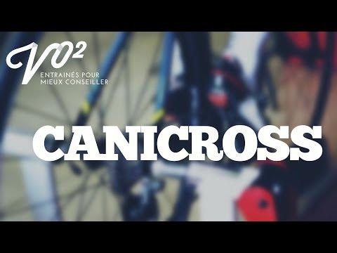 MAtv Saguenay-Lac-Saint-Jean Conseils Canicross