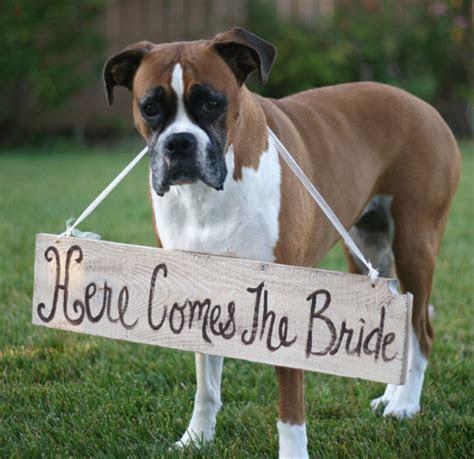 Wedding Reception Decoration Ideas, Wedding Reception