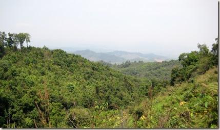 Long_View