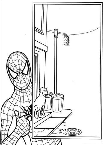 Dibujo De El Hombre Araña Para Colorear Dibujos Para Colorear