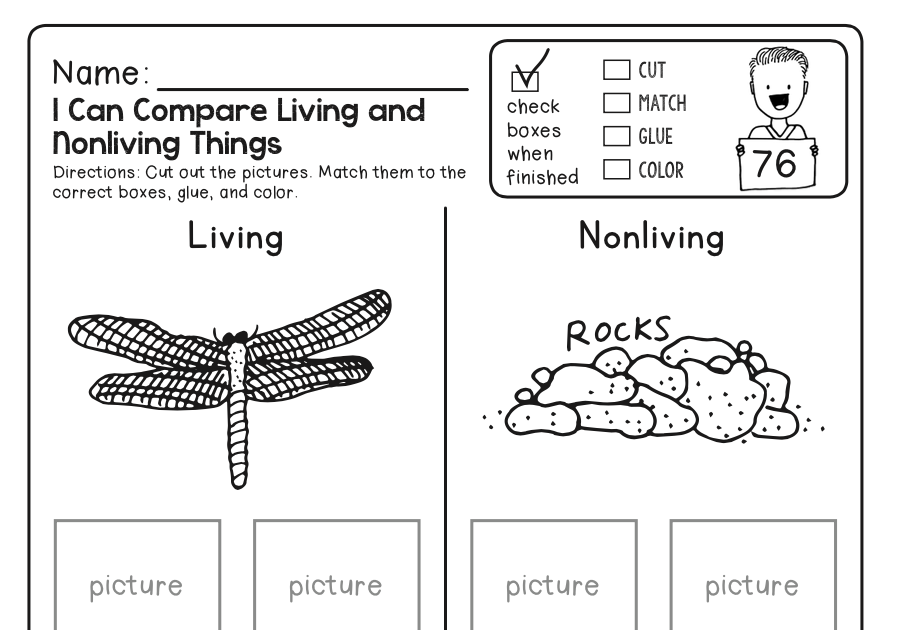 Free Science Worksheets For Kindergarten Pdf