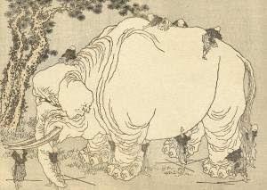 Orbul și elefantul