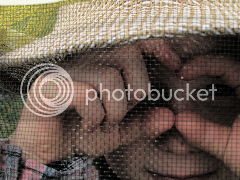 photo b00648b4-aef5-4593-8e2d-5da07e8c741f.jpg