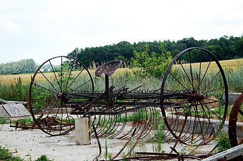 Molitor Farm (44)