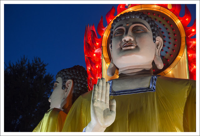 Festival of Lanterns 1