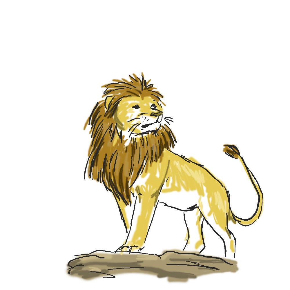 löwe zeichnen einfach  ausmalbilder