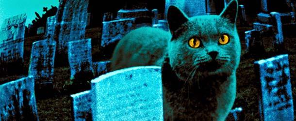 """El cementerio de mascotas de Haldon Hills, el verdadero """"Cementerio viviente"""""""