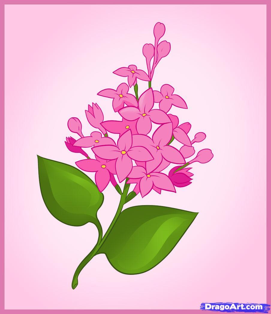 Unduh 91 Koleksi Gambar Flora Yg Simple Terbaik HD