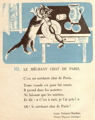 chat de paris