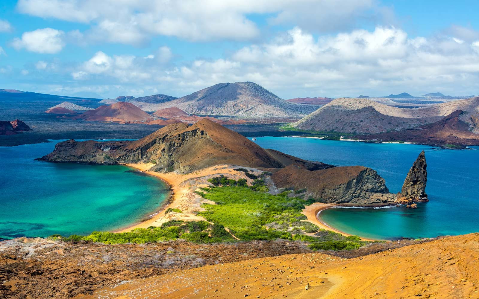 How to Travel to the Galpagos Islands  Travel  Leisure