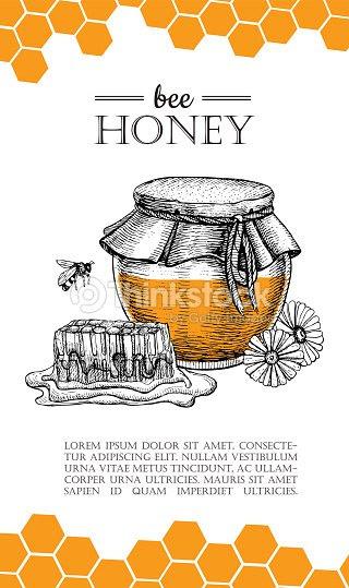 蜂蜜 蜂 ベクトルの手描きイラストハチミツバナー広告ポスター ベクトル