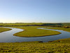 the meandering Cuckmere