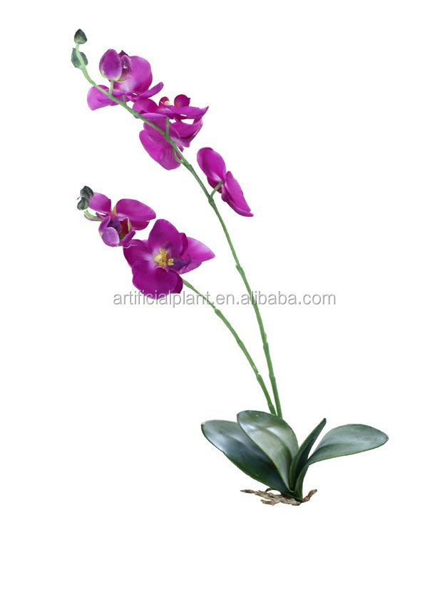 Wholesale 15150cm Artificial Flowers,Artificial Orchid