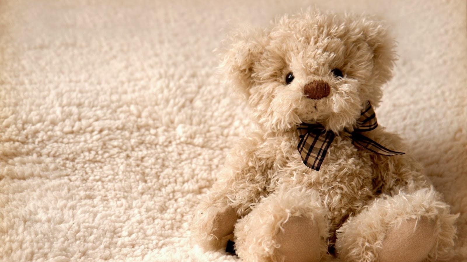 Teddy Bear Wallpaper 1600x900 26612