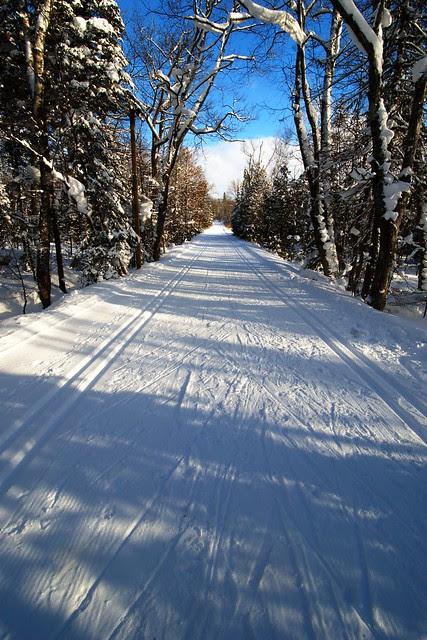 A view down a ski trail, with blue sky.