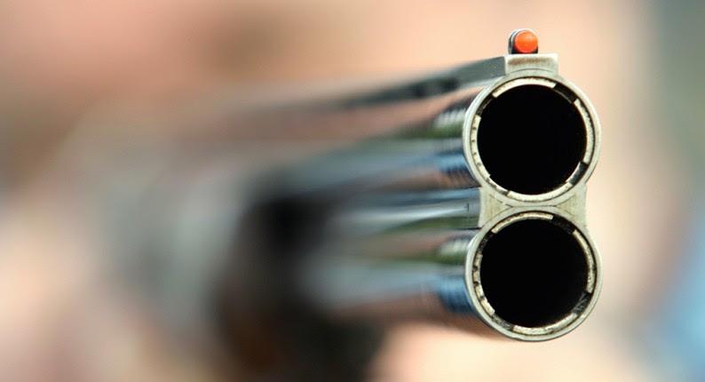 Ανδραβίδα: ΡΟΜΑ απείλησαν με κυνηγετική καραμπίνα 39χρονη