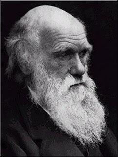 Δαρβίνος(2)