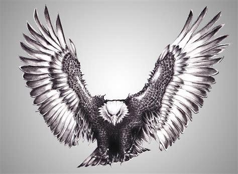 silver eagle   armanl  deviantart