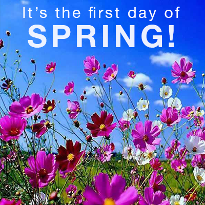 Its The First Day Of Spring Pictures Photos And Images For
