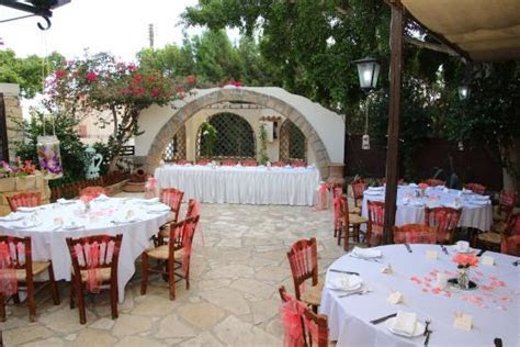 GREEN OLIVE, Paphos   Updated 2019 Restaurant Reviews