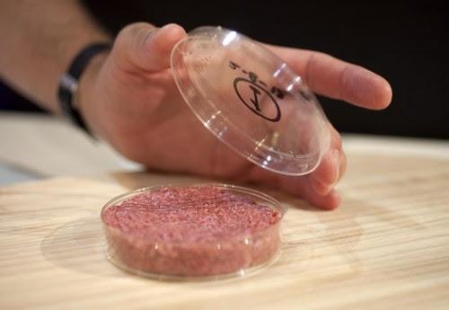 Bikin daging tanpa beternak...