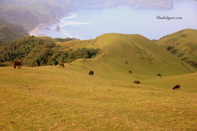 Marlboro Country Batanes