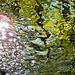 Flowing Water #3