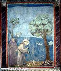 Francis preaching to the birds, by giotto