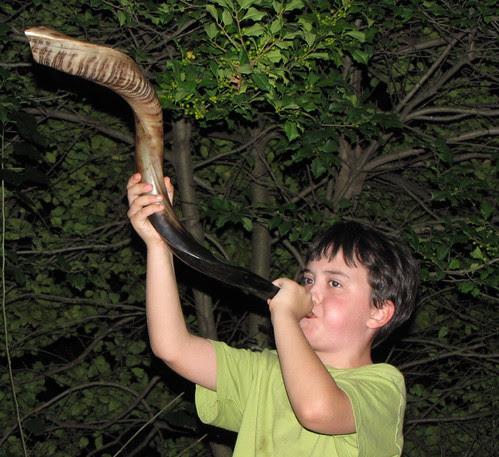 shofar here