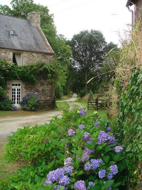 1lifeinspired:  French country cottage   jojo 77 Flickr