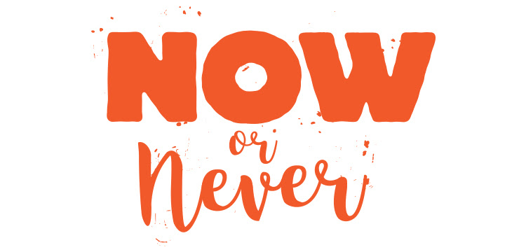 Image result for now or never