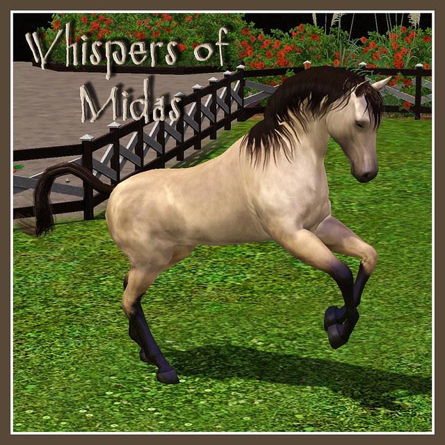 Whisper of Midas - covershot 01