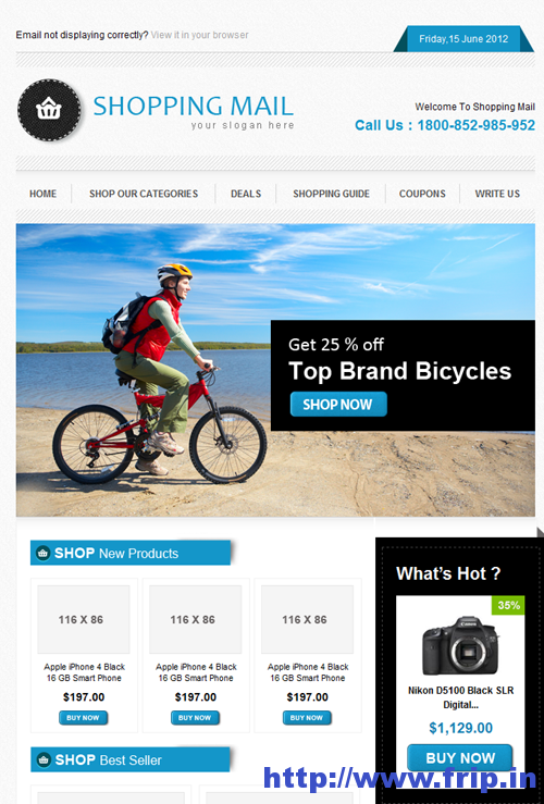 Best 40 Shopping eCommerce Email Templates | Frip.in